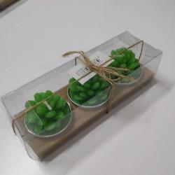 3 lü Kaktüs Mumlar Şık Paketli Model 1